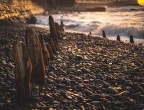 Timmervågbrytare som begravas i kiselstenar på en UK-strand royaltyfri foto