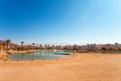 The Timna Lake - Oasis in Timna park, Israel Royalty Free Stock Photography