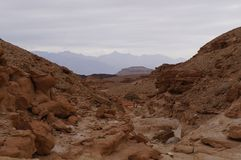 Timna national park near Eilat. In South Israel Royalty Free Stock Photography