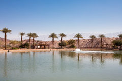 Timna Oasis Royalty Free Stock Photography