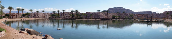 Timna oasis Royalty Free Stock Image