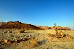 Timna Valley Stock Photo