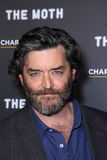 Timothy Omundson Stock Image