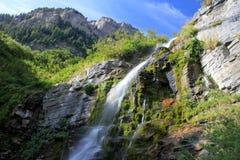 Timpanogos瀑布 图库摄影