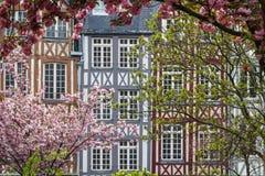 Timrade fasader i Rouen royaltyfri fotografi