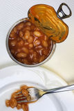 Tin of Baked Beans Stock Image