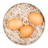 Tin Box With Eggs Image stock