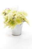 Tin Buckets with Yellow Chrysanthemum Stock Photo