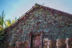 Tin Building in Nord-Kalifornien stockfotos