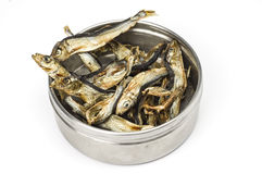 Tin can with dried fishes Stock Images