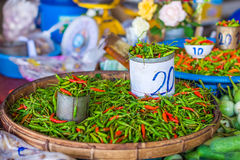 Tin can and heap of red and green chili pepper Royalty Free Stock Photography