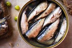 Free Tin Can Of Sprats, Sardines Stock Photo - 48765980
