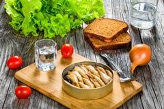 Tin can with smoked Baltic sprats, sardines, close-up Stock Images
