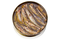 Tin can with sprats on white Royalty Free Stock Image