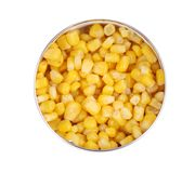 Tin with canned sweet corn. Stock Image