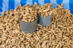 Tin cans and heap of boiled peanuts. The peanuts are in Thailand fresh food market for retail sale Stock Images