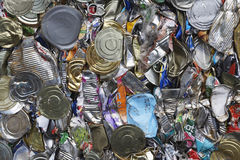 Tin Cans For Recycling schiacciato Immagine Stock
