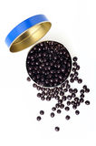 Tin with chocolate caviar Stock Photos