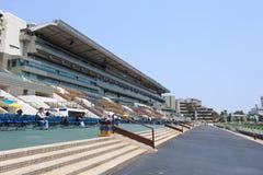 tin för Hong Kong racecoursesha Royaltyfria Foton