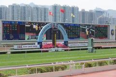 tin för Hong Kong racecoursesha Arkivfoto