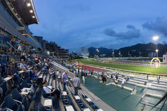 tin för Hong Kong racecoursesha Royaltyfria Foton