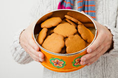Tin of gingerbread biscuits Royalty Free Stock Images