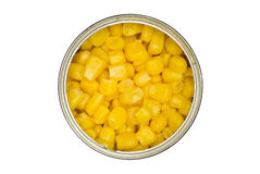 Tin with maize (corn) isolated a white. Stock Photo