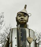Tin Man royaltyfri bild