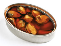 Tin of mussels Royalty Free Stock Photo