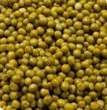 Tin Peas inscatolato Fotografia Stock Libera da Diritti