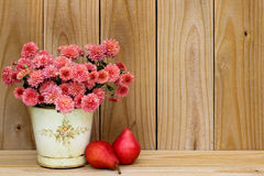 Tin pot of pink mums by red pears and rustic wooden background Stock Images