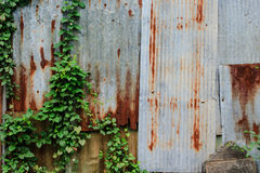 Tin Roof wall countryside background. Tin Roof wall countryside grunge background Stock Photo