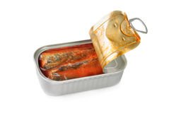 Tin of sardines in tomato sauce. Opened tin of sardines in tomato sauce Royalty Free Stock Photo