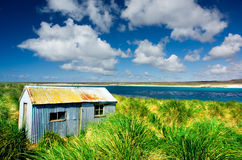 Tin Shed Landscape. A shed on Kidney Island, Falkland Islands Stock Photos