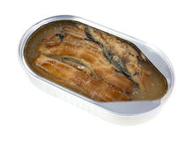 Tin of smoked herring Stock Images