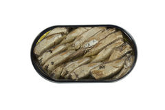 Tin with sprats Royalty Free Stock Image