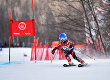 Tina Sutton Memorial - Slalom Ski Competition Stockbilder