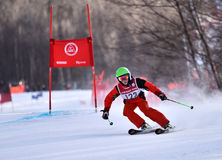 Tina Sutton Memorial - slalom Ski Competition Fotos de Stock