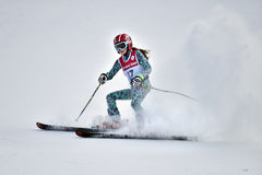 Tina Sutton Memorial - slalom Ski Competition Imagem de Stock