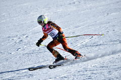 Tina Sutton Memorial - slalom Ski Competition Fotografia de Stock