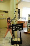 Tina Turner poster at the West Tennessee Music Museum Royalty Free Stock Photos