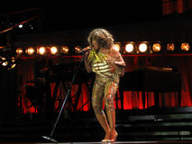 Tina Turner sous tension dans le concert de Prague photographie stock libre de droits