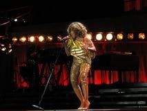 Tina Turner vivo no concerto de Praga fotografia de stock royalty free