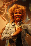 Tina Turner Wax Figure. A wax figure of rock star Tina Turner, at Madame Tussauds in New York City Stock Photo