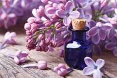 Tincture of aromatic lilac flowers close-up Stock Photo