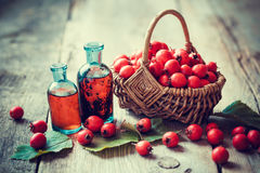 Tincture bottles of hawthorn berries and ripe thorn apples. In basket on old wooden table. Herbal medicine. Selective focus Stock Images