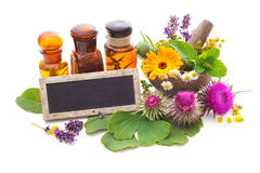 Tincture bottles and healing herbs Stock Photo