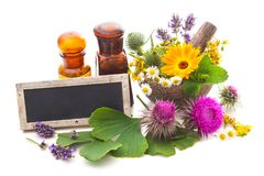 Tincture bottles and healing herbs Stock Image