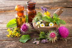 Tincture bottles and healing herbs Stock Photos