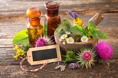 Tincture bottles and healing herbs Royalty Free Stock Images